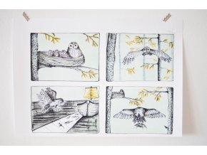 Originální litografie Sovy nejsou, čím se zdají být